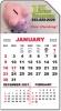 Mini Calendar Pads - Magnet Calendar Pads