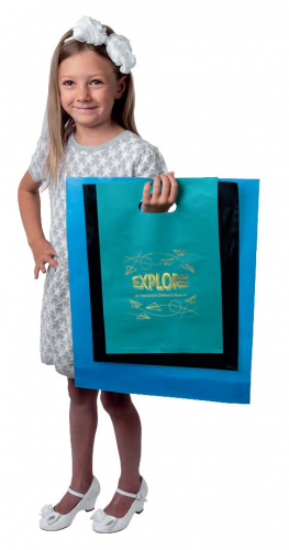 Frosted Brite Die Cut Handle Bags - Orchid ™