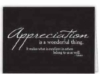 Appreciation Is A Wonderful Thing Everyday Blank Note Card (3 1/2