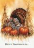 Thanksgiving Turkey & Pumpkin Holiday Greeting Card (5