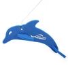 Dolphin on a Leash