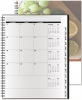 Analyst Monthly Planner - ClearView