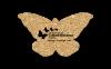 Butterfly Cork Coaster 4BT