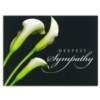 THE BEAUTY OF LILIES (Silver Lined White Envelope)