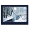 RADIANT VIEW (Silver Lined White Fastick® Envelope)