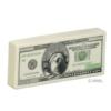 Million Dollar Bill Stress Reliever