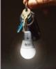 Light Up LED Bulb Keytag