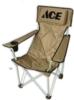 Elite Lounger Chair