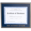 Matted Certificate/Photo Frame (8