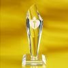 Award-Torch 7-1/2