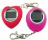 Assorted shaped digital photo key chains