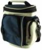 Multi pocket lunch bag with carry strap