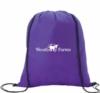 Non-Woven Shimmer Drawstring Backpack - New