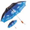 Peerless Umbrella Cloud