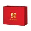 Gloss Laminated Euro Tote Bag w/ Macrame Rope Handles (9