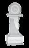 Medium Astral Award