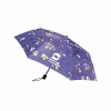 Fashion Floral Hibiscus Print Folding Umbrella