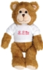 SV Theodore Bear (15
