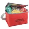 6 Pack Soft Side Lunch Cooler