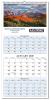 3 Month Wall Calendar with 12 Full Color Custom Photos.
