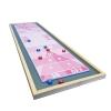 Custom Tabletop Shuffleboard Game