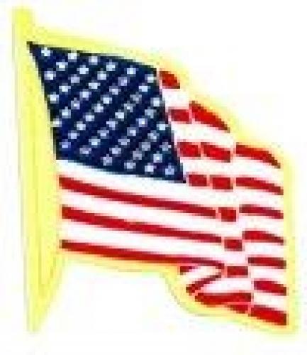 American Flag Service Lapel Pin