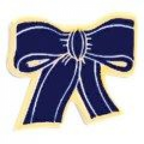Police Support Ribbon Service Lapel Pin