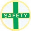 Safety Service Lapel Pin