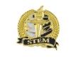 Bright Gold Academic STEM Lapel Pin (1-1/8