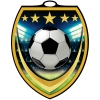 Vibraprint™ Shield Soccer Medallion (3