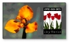 Lenticular Magnetic Business Card 40 mil (2