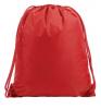 Large Drawstring Backpack