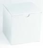 Damage Resistant Master Cartons - 24x16x13 - Standard White Gift Box