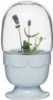 Green greenhouse on a stand with a glass dome, lavender blue