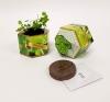Oregano Herb SeedGems Paper Planter - Biodegradable grow kit