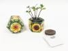 Dwarf Sunflower 'Autumn Beauty'  SeedGems Paper Planter - Biodegradable grow kit