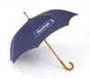 Euro Fashion Auto-Open Umbrella