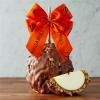 Milk Chocolate Walnut Pecan Autumn Jumbo Caramel Apple