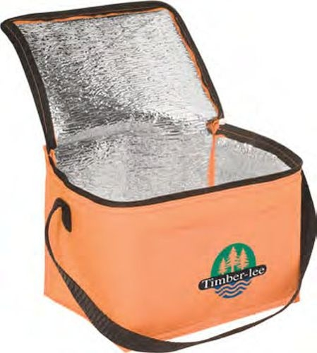 Lunch Bags & Cooler